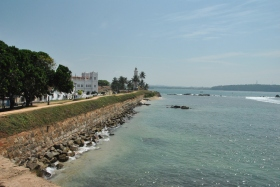 Galle (101)