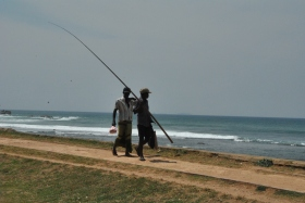Galle (120)