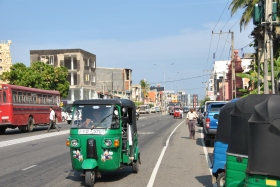 Galle (67)