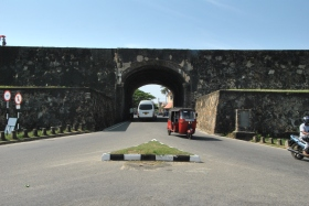 Galle (82)