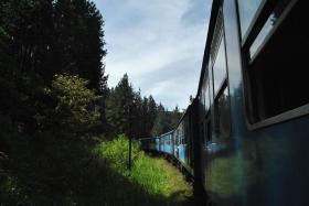 Tren Kandy a Nanu Oya (59)