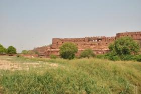 Agra (224)