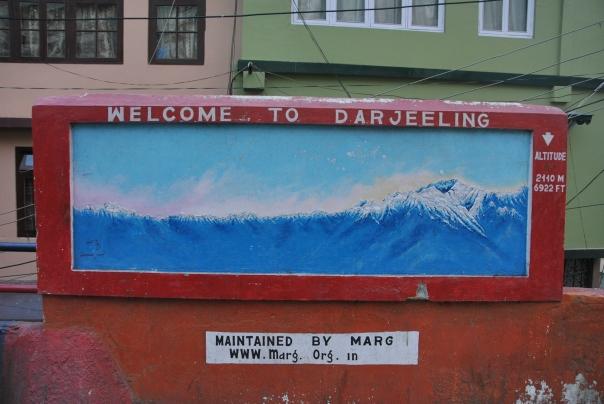 Darjeeling (133)