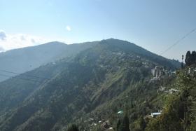 Darjeeling (227)
