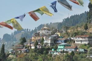Darjeeling (241)