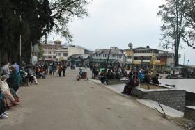 Darjeeling (255)