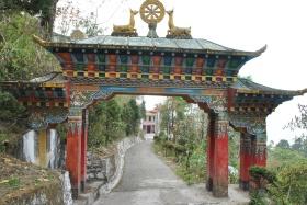 Darjeeling (260)