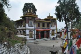 Darjeeling (264)