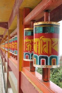 Darjeeling (266)