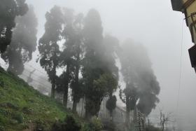 Darjeeling (283)