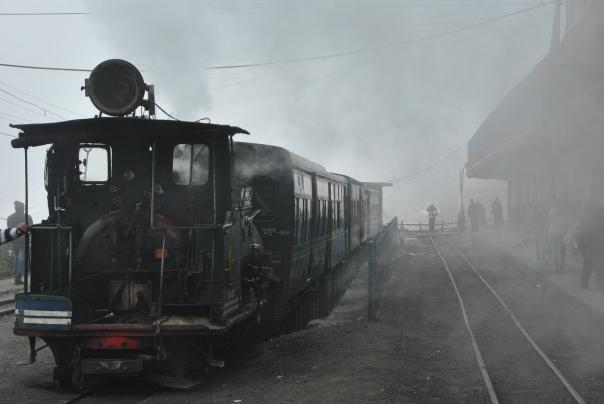 Darjeeling (287)