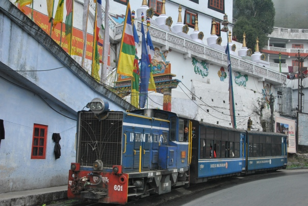 Darjeeling (304)