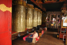 Darjeeling (320)
