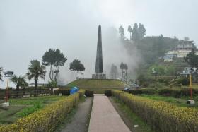 Darjeeling (337)