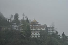 Darjeeling (344)