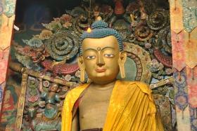 Darjeeling (352)