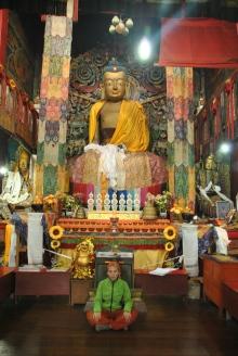 Darjeeling (354)