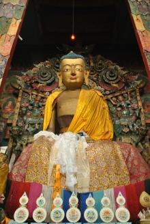 Darjeeling (356)