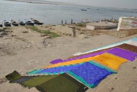 Varanasi (761)