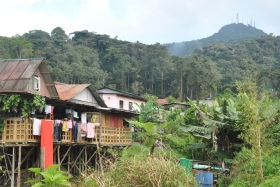 Cameron Highlands (201)