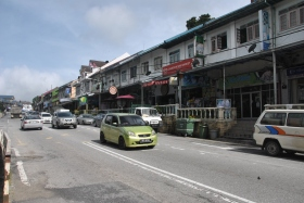 Cameron Highlands (401)
