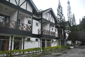 Cameron Highlands (427)
