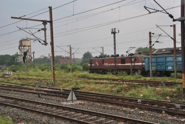 Retorn a Kolkata (35)