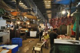 Retorn a Kolkata (51)