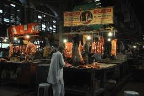 Retorn a Kolkata (61)
