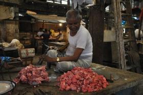 Retorn a Kolkata (66)