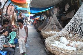Retorn a Kolkata (83)