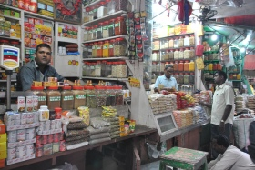 Retorn a Kolkata (87)