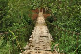Luang Namtha (115)