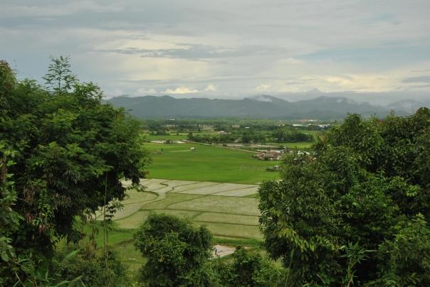 Luang Namtha (166)