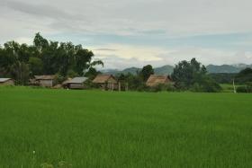 Luang Namtha (173)