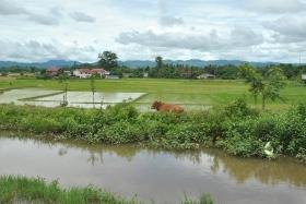 Luang Namtha (7)