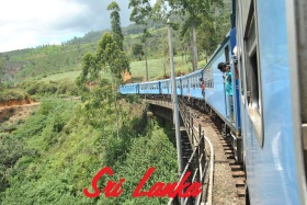 Tren Kandy a Nanu Oya (172)