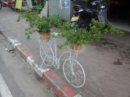 Vientiane (79)