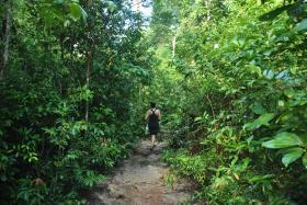 Koh Rong (96)