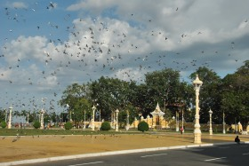 Phnom Penh (87)