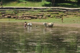 Siem Reap (372)