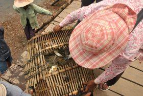 Kampot i Kep (27)