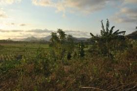 Lombok (157)