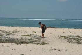 Lombok (47)