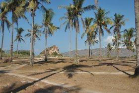 Lombok (51)
