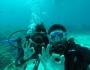 Vida a Bord per les illes de Flores, Komodo iRinca