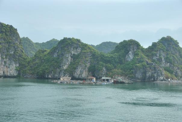 Halong Bay (330)