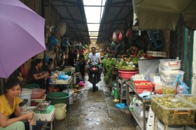 Hanoi (303)