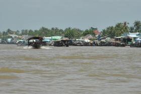 Delta Mekong (10)