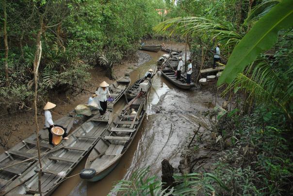 Delta Mekong (108)